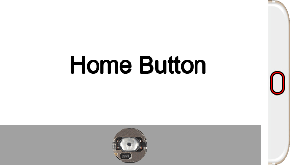 Home Button Not Working